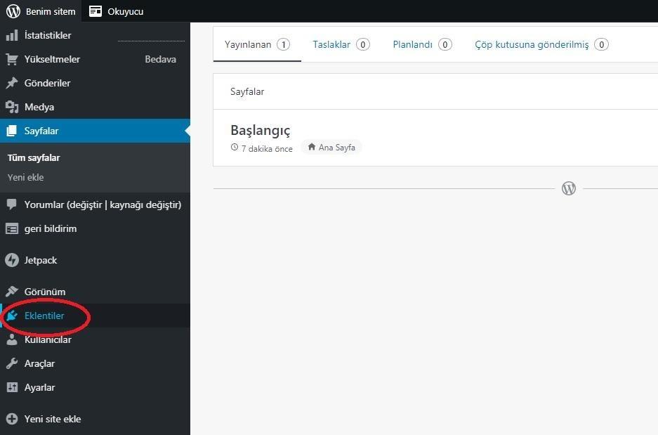 WordPress yönetim paneli Eklentiler menü başlığı ekran görüntüsü